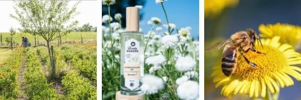 organic vegan cosmetics cruelty free bee wax animal makeup remover
